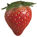 Sunseed berry.png