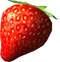 SunseedBerry1.png